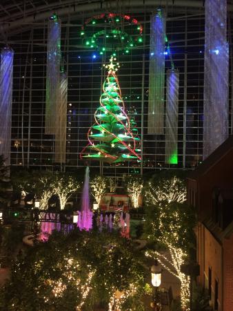 Gaylord National Resort u0026 Convention Center Christmas tree lights show & Christmas tree lights show - Picture of Gaylord National Resort ...