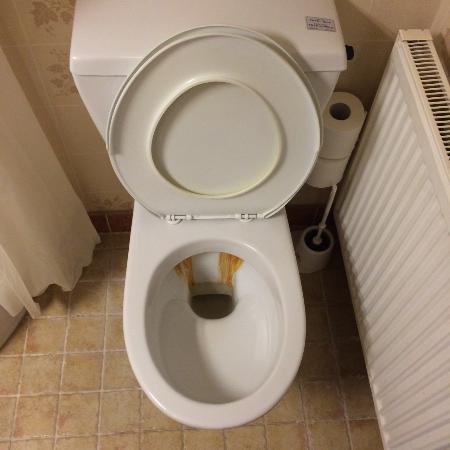 Menstrup, Danmark: toilet