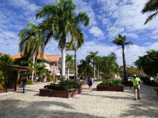 The resort picture of ifa villas bavaro resort spa for Villas bavaro