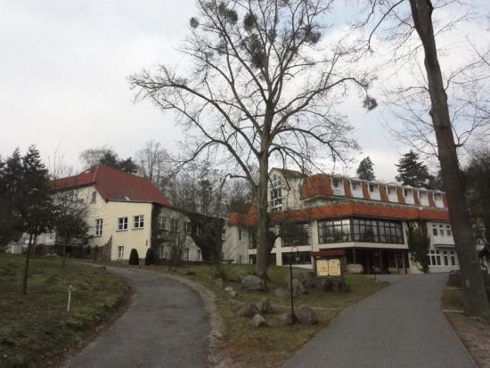 Hotel Haus Chorin und Restaurant Immenstube