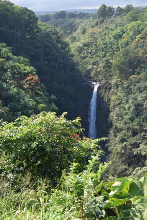 Honomu, Havai: Final waterfall view