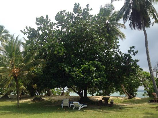 Анс-Форбанс, Сейшельские острова: Chalets d'Anse Forbans