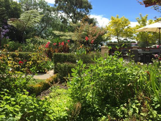 Pohara, New Zealand: photo4.jpg