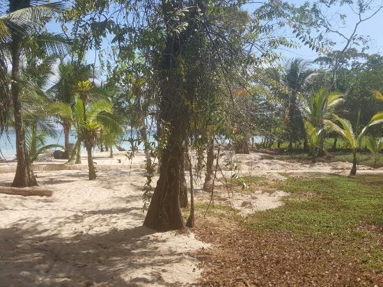 Isla Popa, Panamá: 20160114_133922_large.jpg