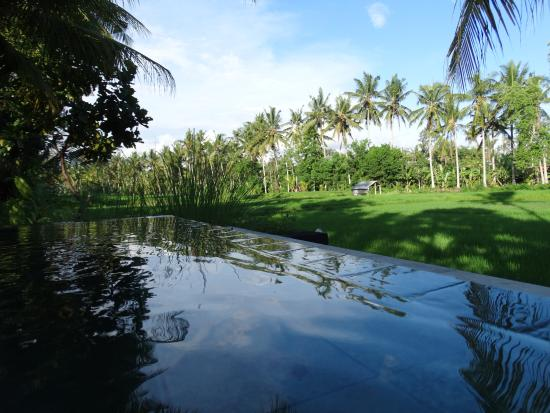 Villa Sabandari: piscina