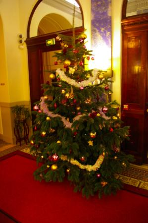 Hotel Carlton Lyon - MGallery Collection : Christmas tree in lobby