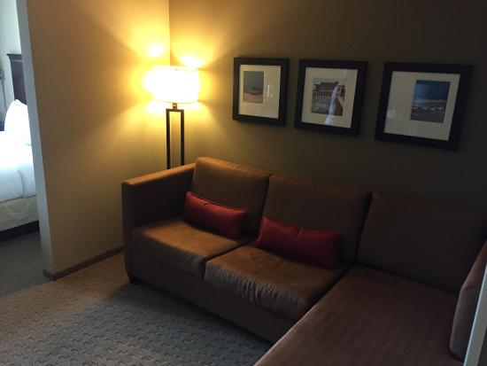 Comfort Suites Sarasota: Pull-out sofa/bed