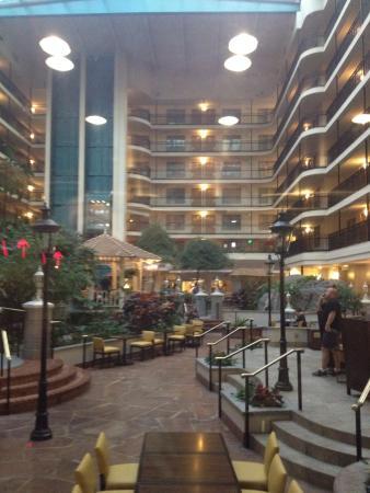 hotel atrium picture of embassy suites by hilton anaheim north rh tripadvisor ca