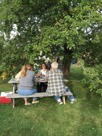 Brooksville, ME: Dining al fresco at the Tinder Hearth Bakery