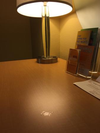 La Quinta Inn & Suites Sarasota: photo9.jpg