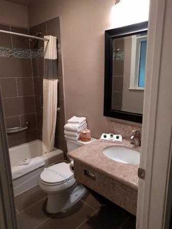 Alamo Inn & Suites: Updated Bathroom
