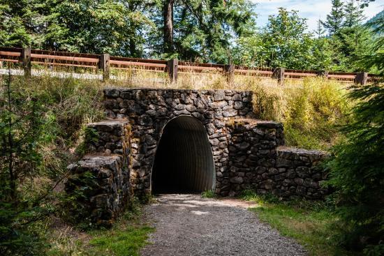 Marymere Falls Trail : Trail Tunnel Under Hwy