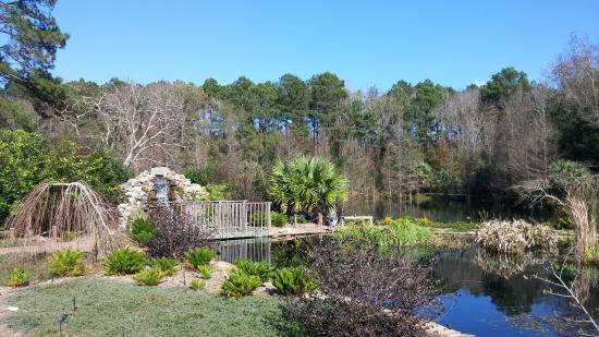 Merveilleux Coastal Georgia Botanical Gardens