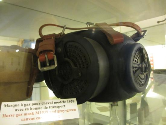 Horse gas mask - Photo de World War 2 Museum, Quineville - TripAdvisor 98d40e4e93b3