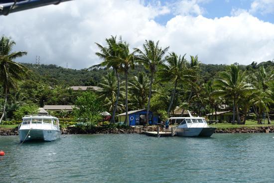 Waidroka Bay Resort : dock