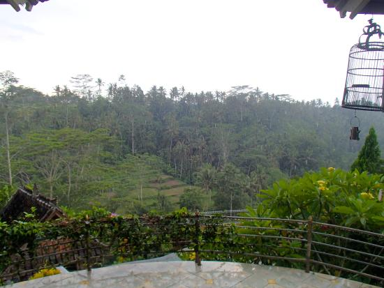 ‪‪Tirta Asri Ubud‬: view out to the mountains‬