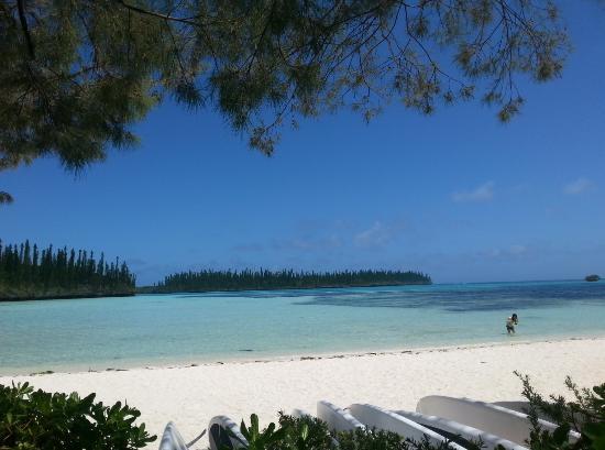 playa picture of le meridien ile des pins ile des pins tripadvisor