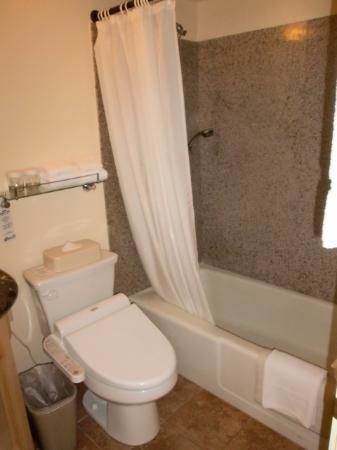 Waikiki Sand Villa Hotel: バスルーム