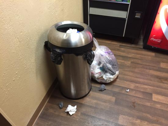 Crossland Economy Studios - Louisville - St. Matthews: Trash in laundry room