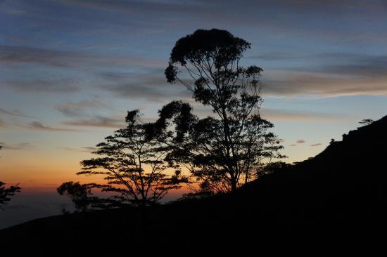 Sir John's Bungalow: Sunrise