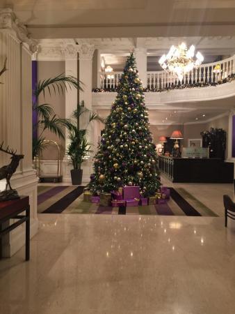 The Balmoral Hotel: Lobby Christmas Tree