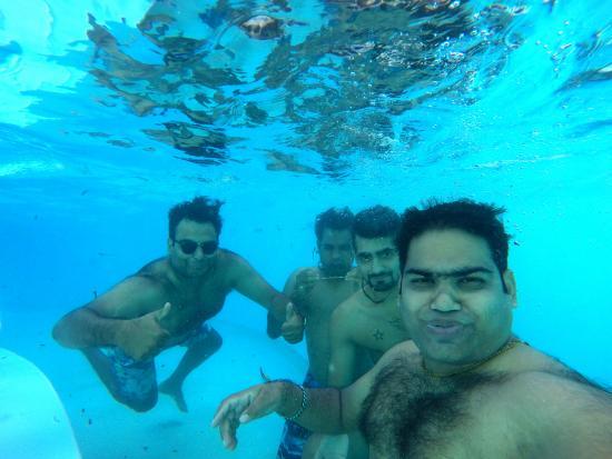 White Elephant Sea & Art Lodge: In the pool