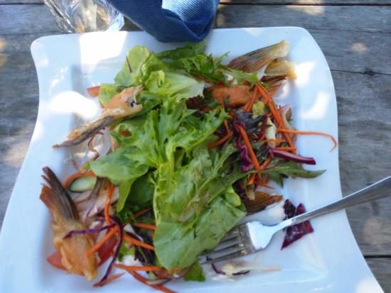 Akaroa Restaurant and Bar : This was the plate. Just salad and five bits of salmon and it cost 20 dollars!
