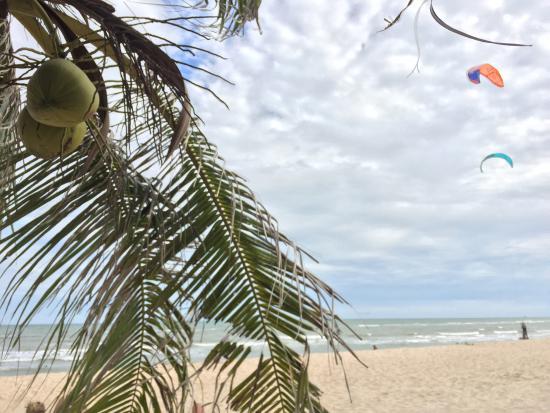 17 knot kite surf center: photo1.jpg