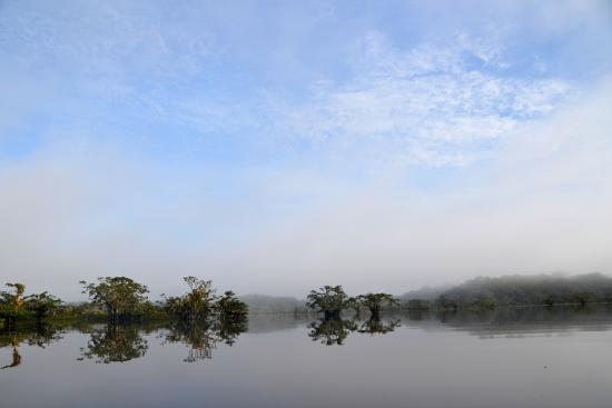 Cuyabeno Lodge: Laguna