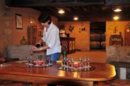 Plassac, Prancis: La dégustation des vins de Blaye