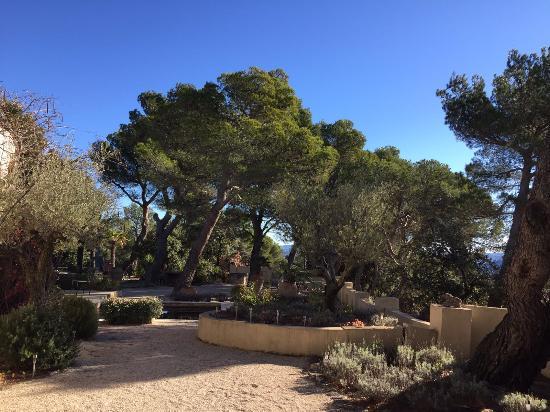 Vaugines, Francia: Une partie du jardin
