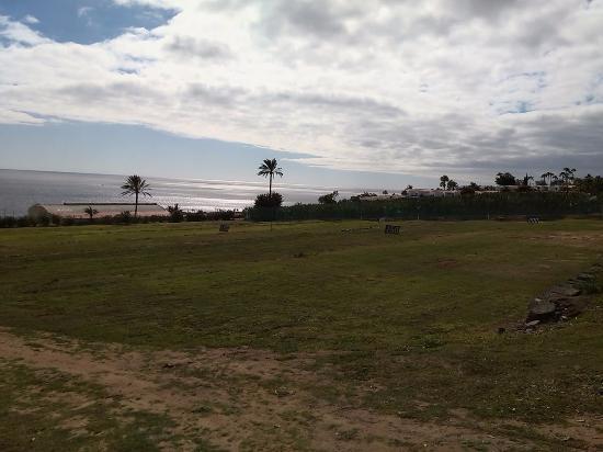 Tecina Golf: Драйв поле.