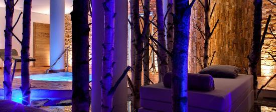 Hostellerie La Cheneaudiere - Relais & Chateaux: le coin détente dans une forêt de bouleaux