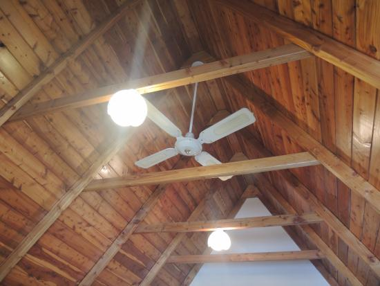 Mountain Chalet Motels: Ceiling