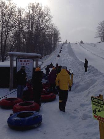 Grayling, ميتشجان: Try a snow tubing session.  So much fun!