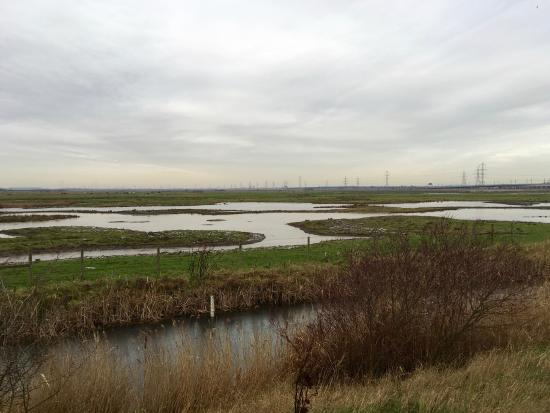 Purfleet, UK: Rainham Marshes