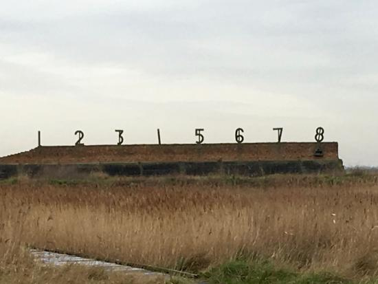 Purfleet, UK: Rainham Marshes - Firing Range