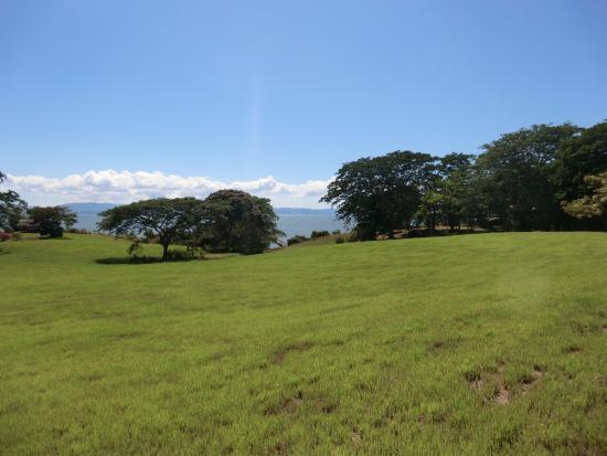 Manzanillo, Costa Rica : ホテルの庭