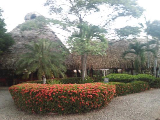 Manzanillo, Costa Rica: レストラン外観