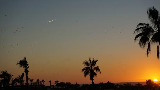Sofitel Agadir Thalassa Sea & Spa: coucher soleil