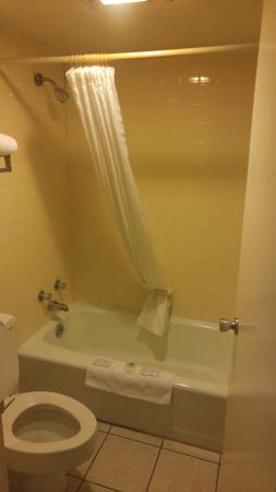 Conway, AR: Bathroom in Single King Room