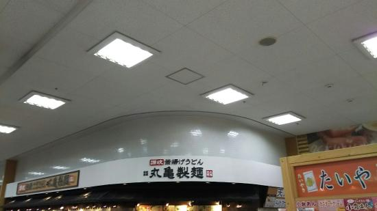 Authentic Kamaage Udon of SANUKI Marugame Seimen Nikke Colton Plaza