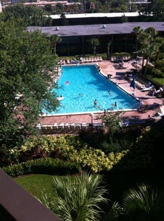 Rosen Inn International: One of the pools
