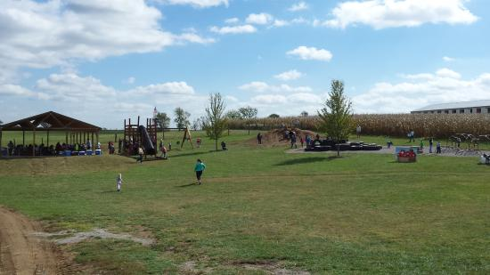 Shelbyville, KY: Great playground for all ages