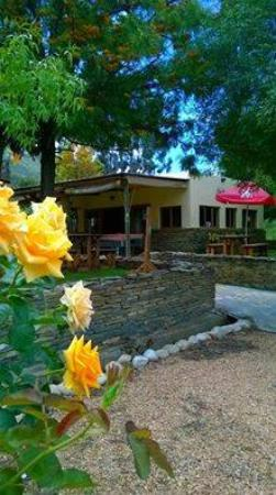 Barrydale Backpackers & Dung Beetle Bar: Our beautiful roses