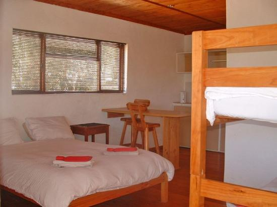 Barrydale Backpackers & Dung Beetle Bar : The 'family room'. En-suite bathroom. Sleeps four.