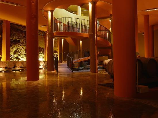 Gf noelia from 77 9 8 updated 2017 hotel reviews - Hotel noelia tenerife ...