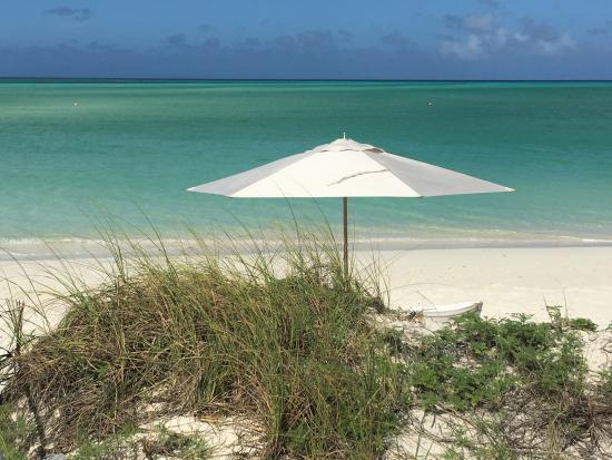 mare picture of como parrot cay turks and caicos parrot cay rh tripadvisor ie