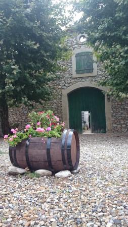 Caudies de Fenouilledes, Frankrike: our yard