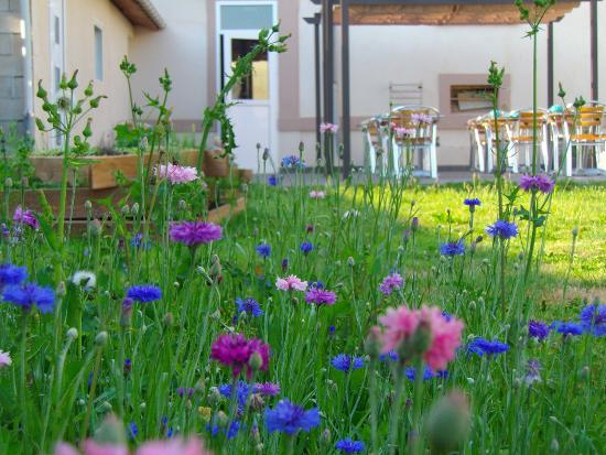 lauberge de vauclair jardin fleuri - Jardin Fleuri